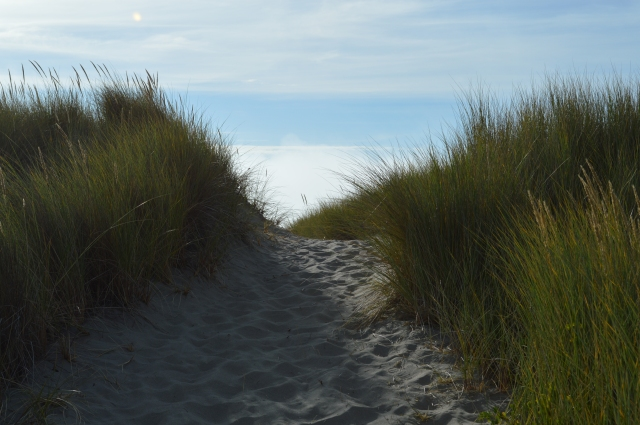 Path to Beach Newport Oregon
