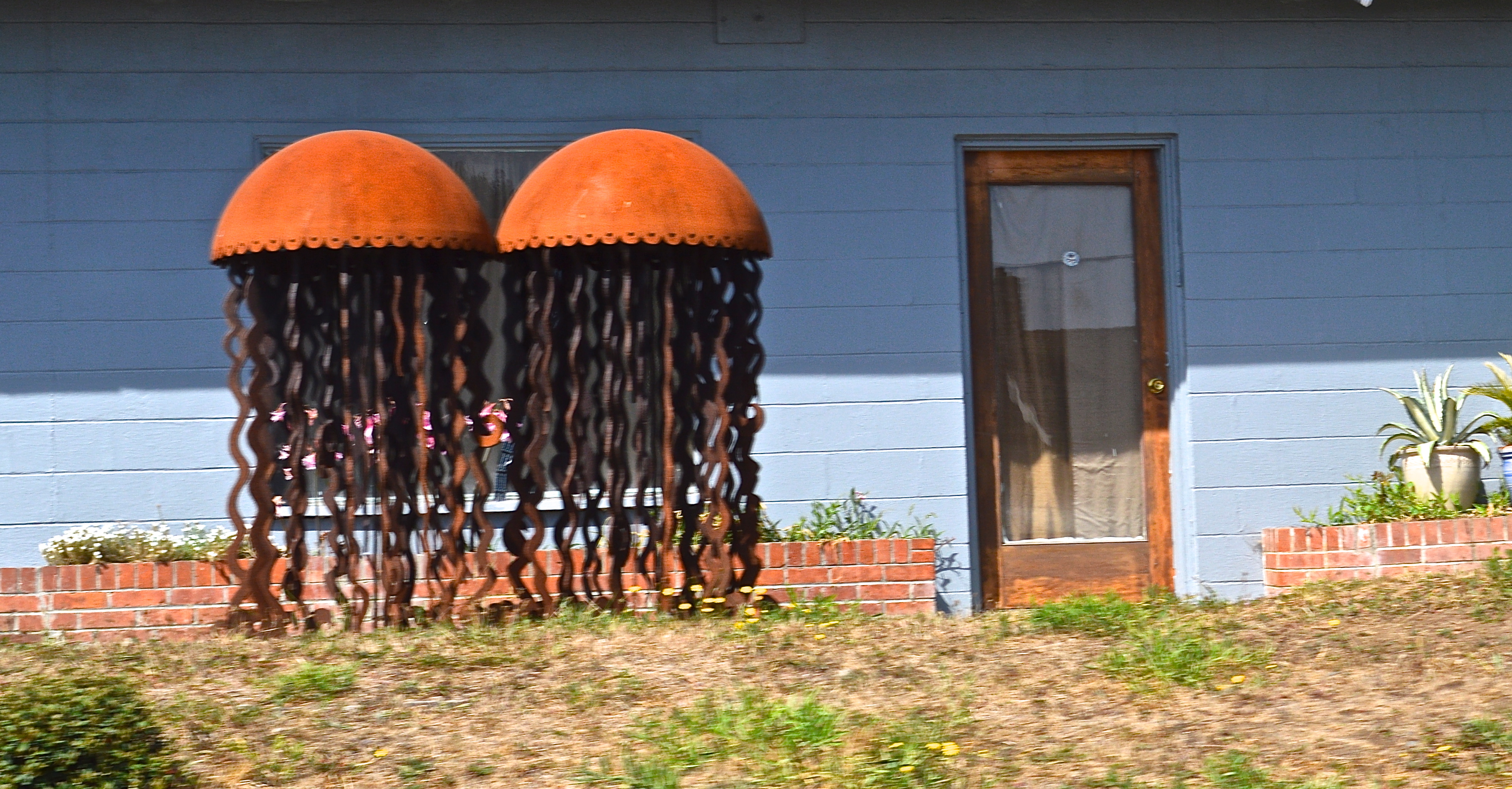 Iron Jelly Fish Sculptures Trinidad California