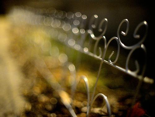 old metal fence along a lane