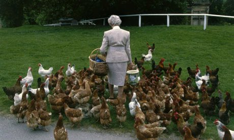 Woman and chickens