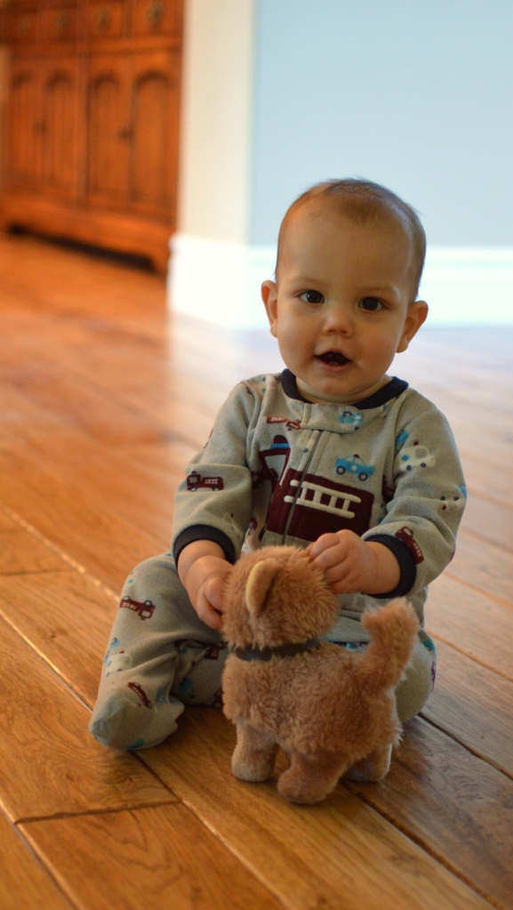 little boy and toy dog